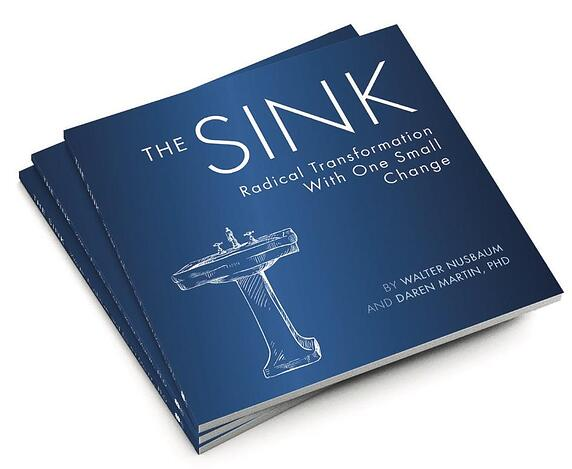 image of book: the sink