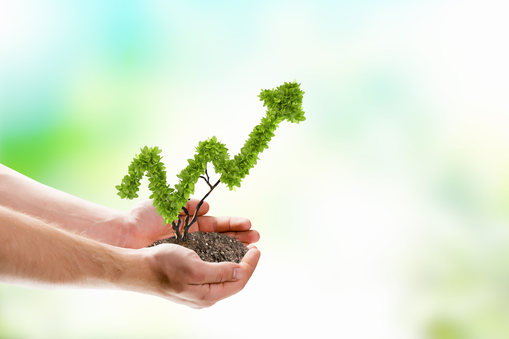 hands holding a small plant in the shape of a growth chart pointing up